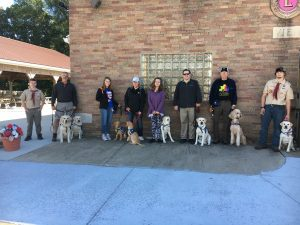 Deafinitely Dogs! Annual Service Dog Awareness Walk