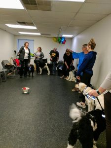 Puppy raisers having class with their service dogs in training