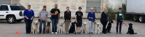 super puppy raisers with their service dogs in training at an outdoor class