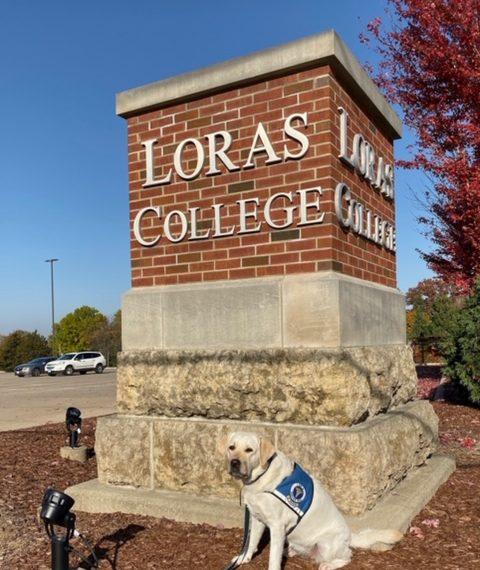 Campus Pups Program