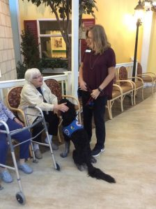 Service dog in training Clutch, a black golden doodle with his puppy raiser getting pet by a resident